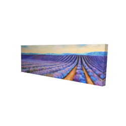 Canvas 16 x 48 - 3D - Lavender fields