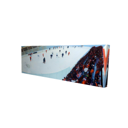 Canvas 16 x 48 - 3D - Game of hockey
