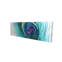 Canvas 16 x 48 - 3D - Peacock feather closeup