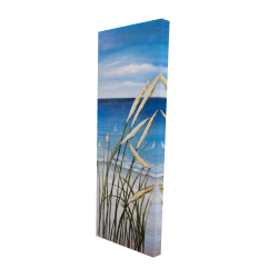 Canvas 16 x 48 - 3D - Wild herbs on the beach