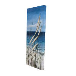 Plante oyat dans le vent sur la plage