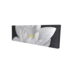 Canvas 16 x 48 - 3D - Overhead view of a lotus flower