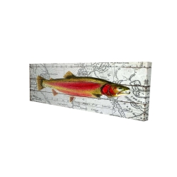 Canvas 16 x 48 - 3D - Pink trout on a map