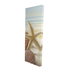 Canvas 16 x 48 - 3D - Starfish and seashells at the beach