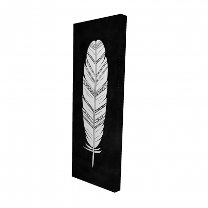 Feather with patterns