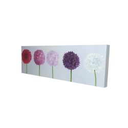 Canvas 16 x 48 - 3D - Dahlia pomponowa