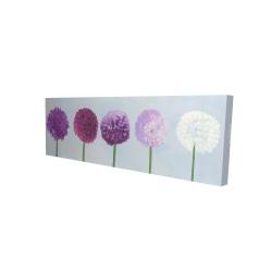 Canvas 16 x 48 - 3D - Dahlia pompon