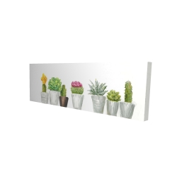 Canvas 16 x 48 - 3D - Mini cactus and succulents