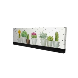 Canvas 16 x 48 - 3D - Mini cactus and succulents