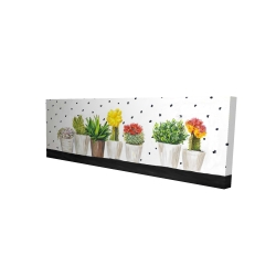 Canvas 16 x 48 - 3D - Small cactus and succulents
