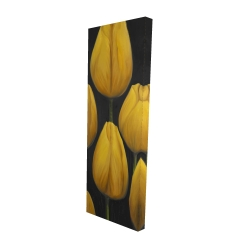 Canvas 16 x 48 - 3D - Six daffodils flowers