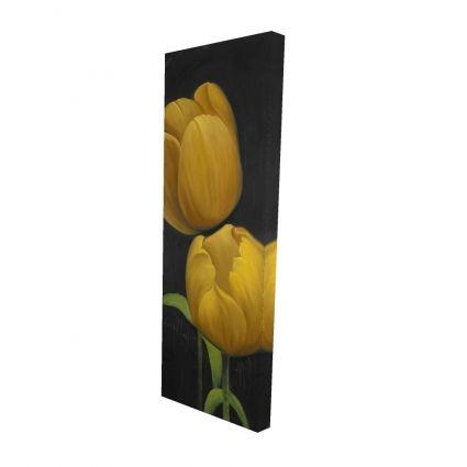 Two daffodils flowers