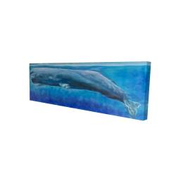 Canvas 16 x 48 - 3D - Sperm whale