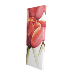Canvas 16 x 48 - 3D - Blossoming tulips closeup