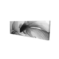 Canvas 16 x 48 - 3D - Monochrome two betta