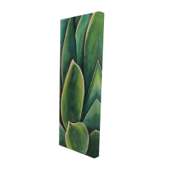 Canvas 16 x 48 - 3D - Watercolor agave plant
