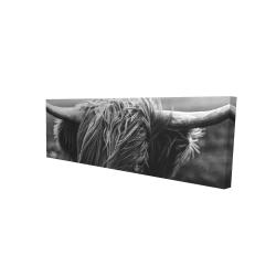 Canvas 16 x 48 - 3D - Monochrome portrait highland cow