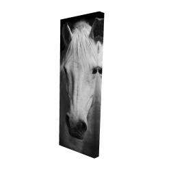 Canvas 16 x 48 - 3D - Monochrome horse