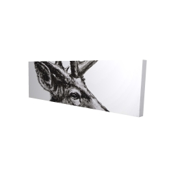 Canvas 16 x 48 - 3D - Roe deer plume