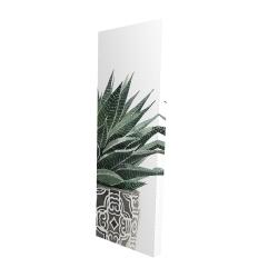 Canvas 16 x 48 - 3D - Zebra plant succulent