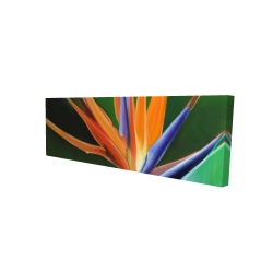 Canvas 16 x 48 - 3D - Bird of paradise flower