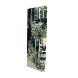 Canvas 16 x 48 - 3D - Plants shop