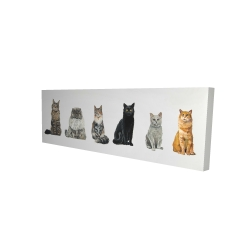 Canvas 16 x 48 - 3D - Six cats lined up