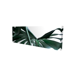 Canvas 16 x 48 - 3D - Monstera deliciosa