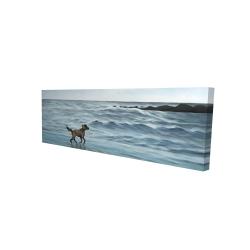 Canvas 16 x 48 - 3D - Dog on the beach
