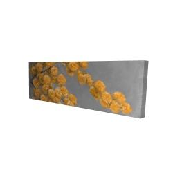 Canvas 16 x 48 - 3D - Golden wattle plant
