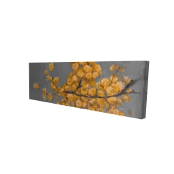Canvas 16 x 48 - 3D - Golden wattle plant with pugg ball flowers