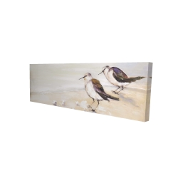 Canvas 16 x 48 - 3D - Two sandpipers on the beach