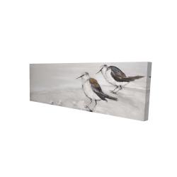 Canvas 16 x 48 - 3D - Two sandpipiers birds