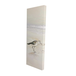 Canvas 16 x 48 - 3D - Semipalmated sandpiper on the beach