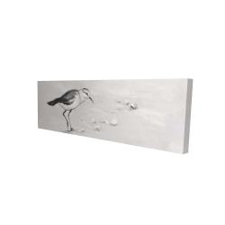 Canvas 16 x 48 - 3D - Semipalmated sandpiper
