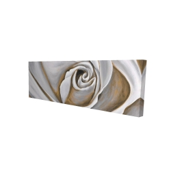 Canvas 20 x 60 - 3D - White rose closeup