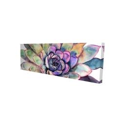 Canvas 16 x 48 - 3D - Multicolored succulent