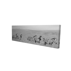 Canvas 16 x 48 - 3D - Zebras in the savannah