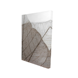 Canvas 24 x 36 - 3D - Translucent dried leaves