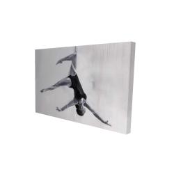 Canvas 24 x 36 - 3D - Dancer on aerial silks