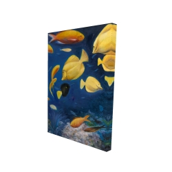 Canvas 24 x 36 - 3D - Fish under the sea