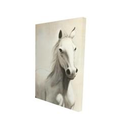 Canvas 24 x 36 - 3D - Gallant white horse