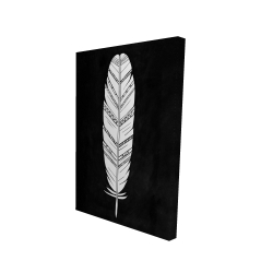 Canvas 24 x 36 - 3D - Feather with patterns