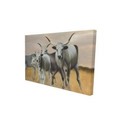 Canvas 24 x 36 - 3D - Nguni breeding