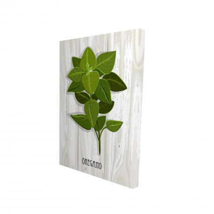 Oregano on wood