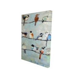 Canvas 24 x 36 - 3D - Small colorful birds