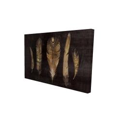 Canvas 24 x 36 - 3D - Brown feather set