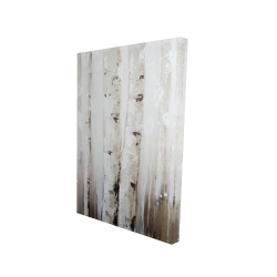 Canvas 24 x 36 - 3D - Abstract white birches
