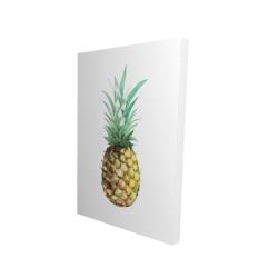 Canvas 24 x 36 - 3D - Watercolor pineapple
