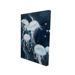 Canvas 24 x 36 - 3D - Medusa